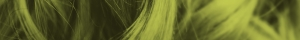 hair-background